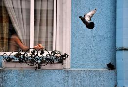 Maria Grazia Piscopello - un attimo di poesia