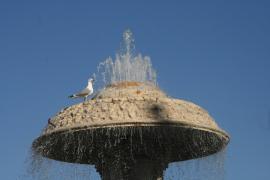 019 fontana a P.zza S.Pietro.jpg