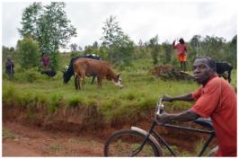burundi17114