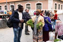 mercato di piazza vittorio